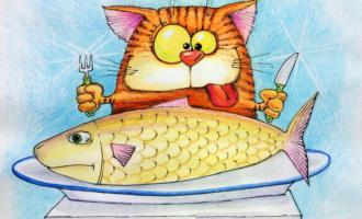 Учимся общаться с рыбой